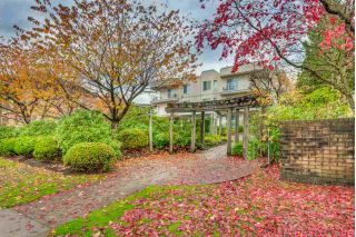 "Main Photo: 108 12206 224 Street in Maple Ridge: East Central Condo for sale in ""Cottonwood Place"" : MLS® # R2223316"
