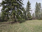 Main Photo: 4138 ASPEN Drive in Edmonton: Zone 16 Vacant Lot for sale : MLS(r) # E4075076