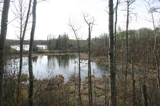 Main Photo: 3 52228 RGE RD 30 Road: Rural Parkland County Rural Land/Vacant Lot for sale : MLS(r) # E4058687