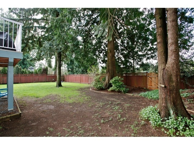 Photo 20: 3769 206A Street in Langley: Home for sale : MLS® # F1436312