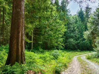 "Main Photo: Lot G GIBB Road: Roberts Creek Home for sale in ""Roberts Creek"" (Sunshine Coast)  : MLS® # R2183879"