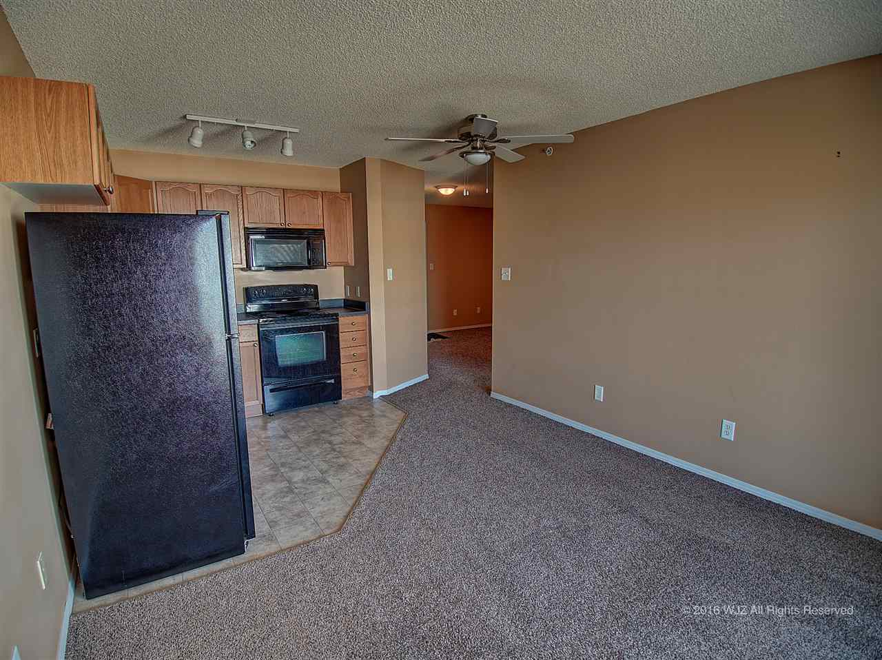 Photo 16: 423 70 woodsmere Close: Fort Saskatchewan Condo for sale : MLS(r) # E4031999