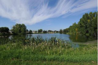 Main Photo: 114 53222 Range Road 272: Rural Parkland County Mobile for sale : MLS® # E4034249