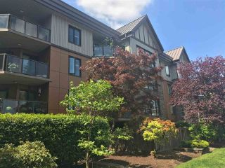 Main Photo: 201 9978 148 Street in Surrey: Guildford Condo for sale (North Surrey)  : MLS®# R2268168