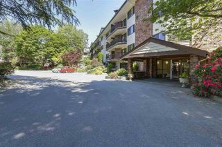 "Main Photo: 304 10180 RYAN Road in Richmond: South Arm Condo for sale in ""STORNOWAY"" : MLS®# R2304334"