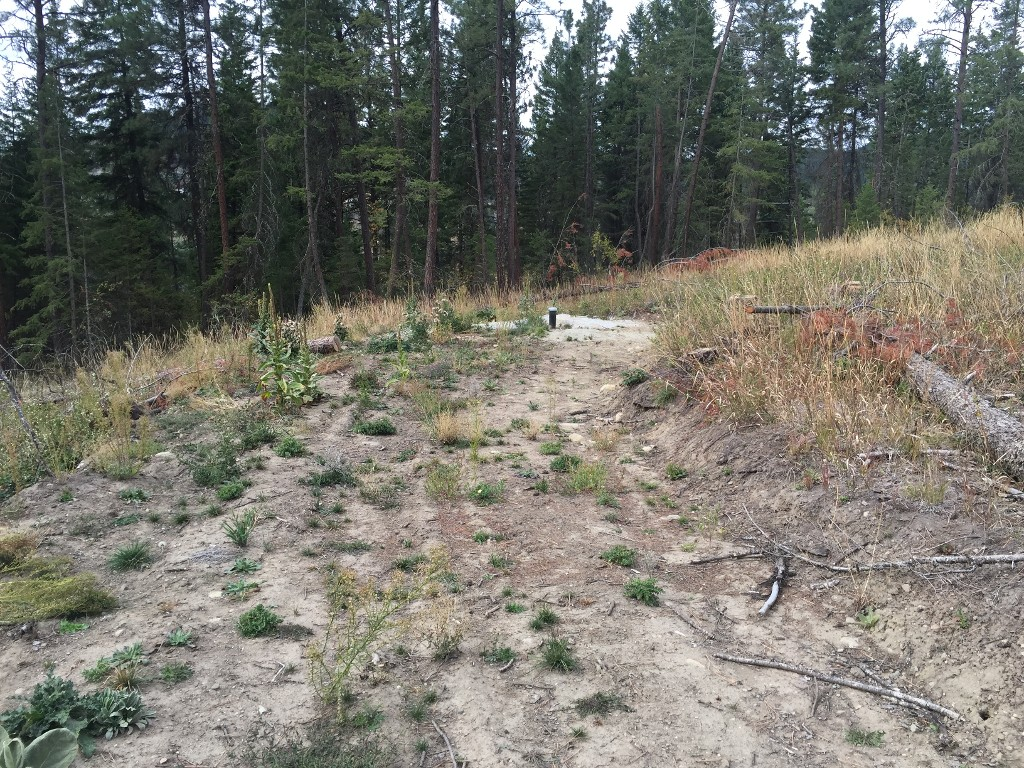 Photo 12: 6575 Dixon Dam Road in Vernon: South BX Vacant Land for sale (North Okanagan)  : MLS(r) # 10106215