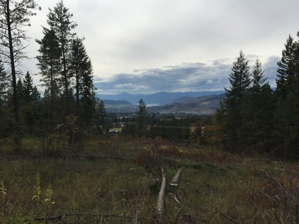 Photo 3: 6575 Dixon Dam Road in Vernon: South BX Vacant Land for sale (North Okanagan)  : MLS(r) # 10106215