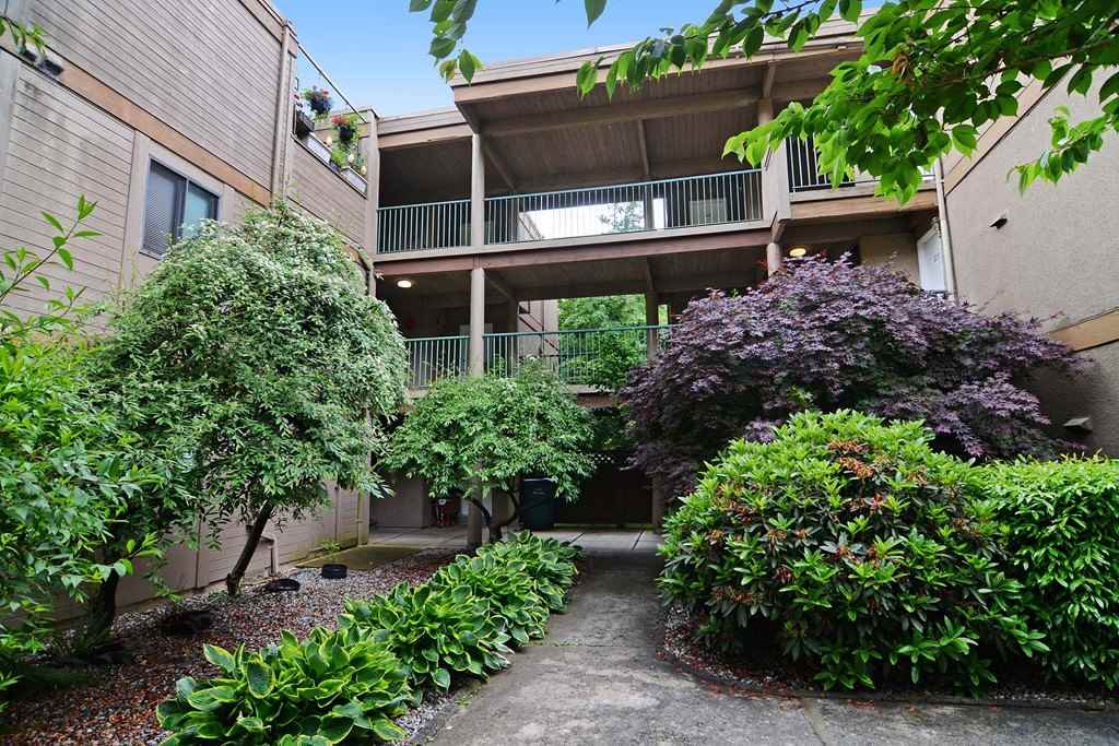"Main Photo: 203 9134 CAPELLA Drive in Burnaby: Simon Fraser Hills Townhouse for sale in ""MOUNTAINWOOD"" (Burnaby North)  : MLS® # R2073627"