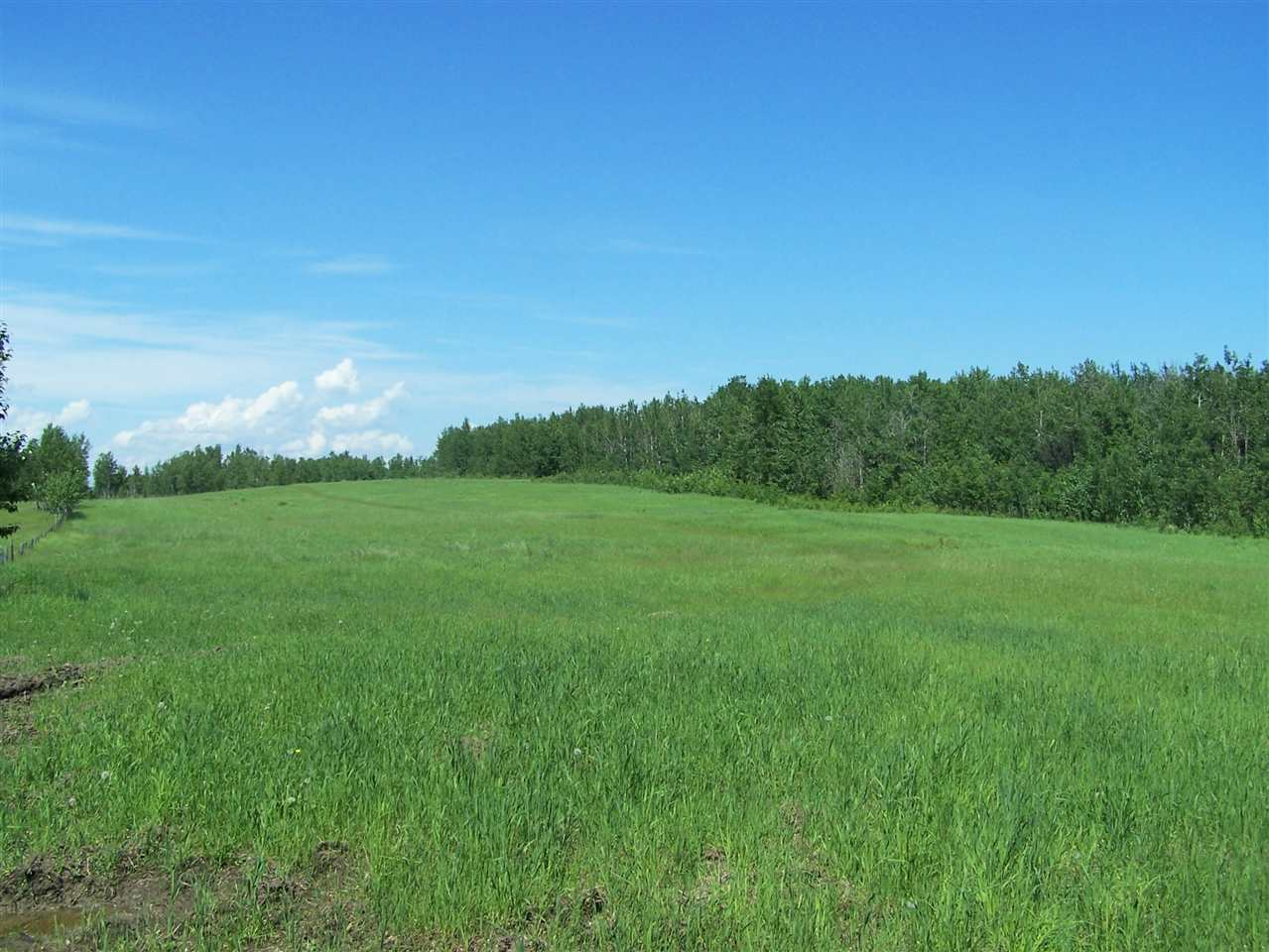 Main Photo: HWY 16 RRD 72: Rural Parkland County Rural Land/Vacant Lot for sale : MLS(r) # E4068539