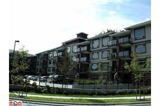Main Photo: 310 2233 MCKENZIE Road in Abbotsford: Central Abbotsford Condo for sale : MLS® # R2221150