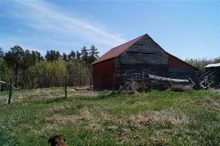 Main Photo: 57202 RR 230: Rural Sturgeon County Rural Land/Vacant Lot for sale : MLS® # E4063792