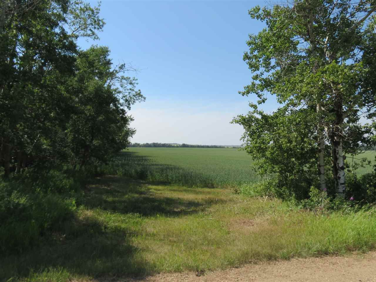 Photo 3: Twp580 RRG 254: Rural Sturgeon County Rural Land/Vacant Lot for sale : MLS® # E4066803