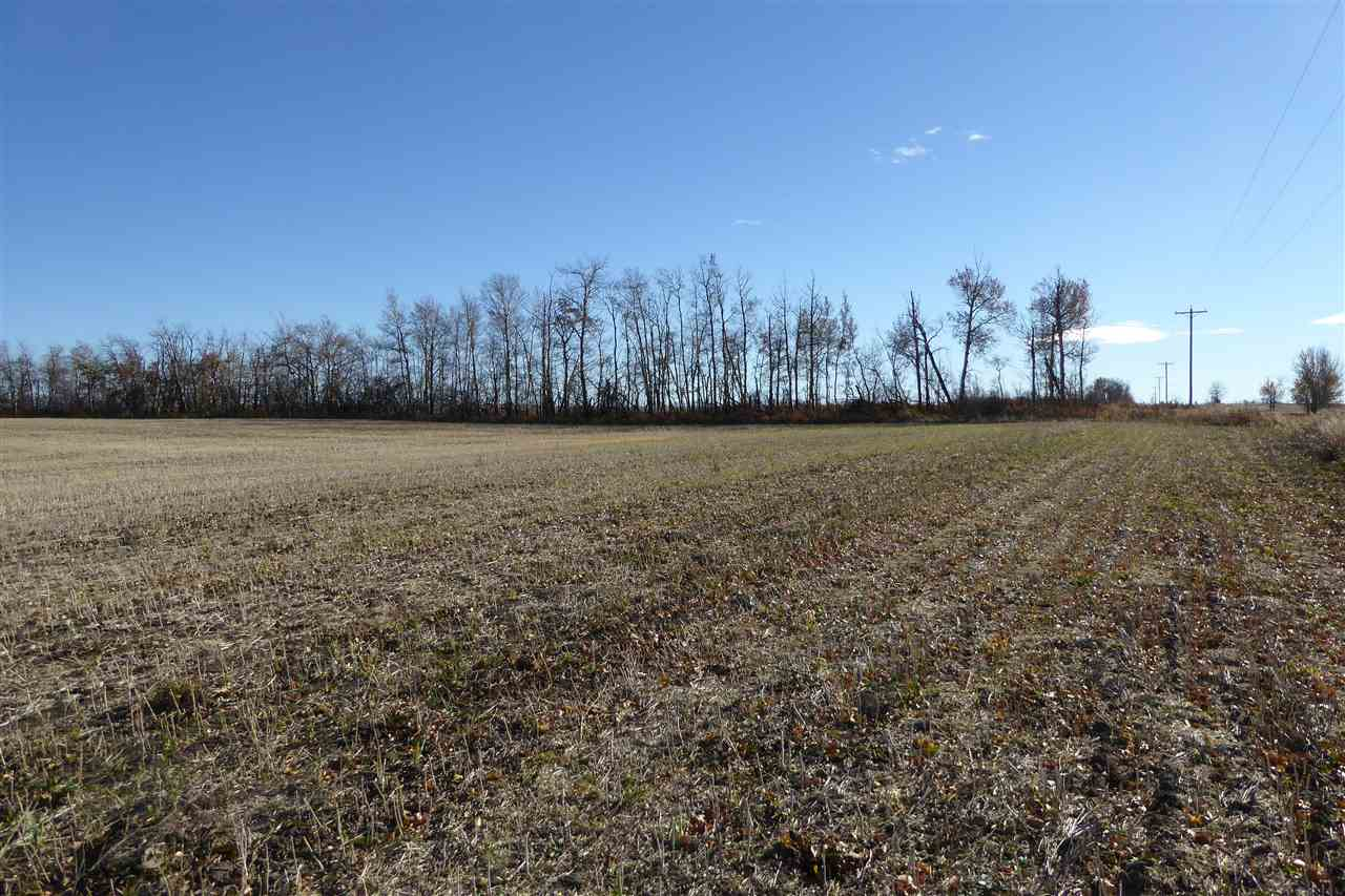Photo 7: Twp580 RRG 254: Rural Sturgeon County Rural Land/Vacant Lot for sale : MLS® # E4066803