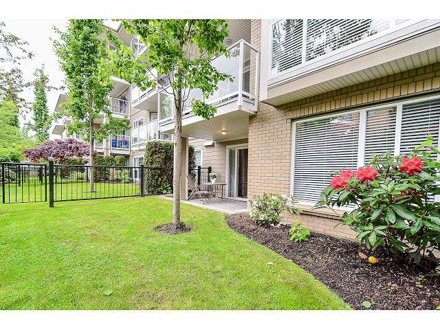 Main Photo: 106 22255 122ND Avenue in Maple Ridge: West Central Condo for sale : MLS® # V1063817