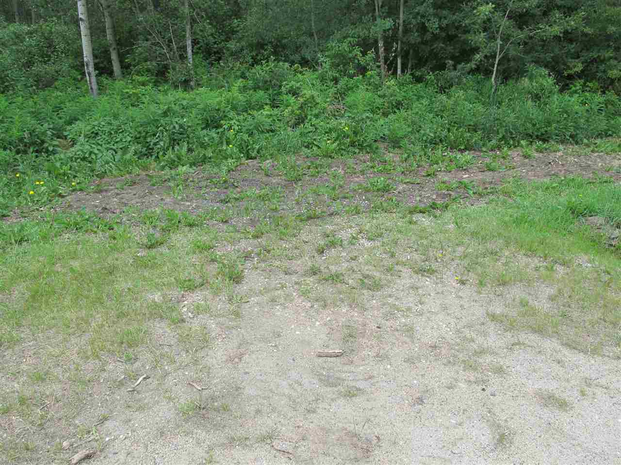 Photo 5: 453 Lakeview Drive: Rural Lac Ste. Anne County Rural Land/Vacant Lot for sale : MLS® # E4046326