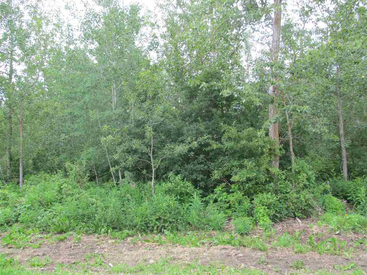 Photo 3: 453 Lakeview Drive: Rural Lac Ste. Anne County Rural Land/Vacant Lot for sale : MLS® # E4046326