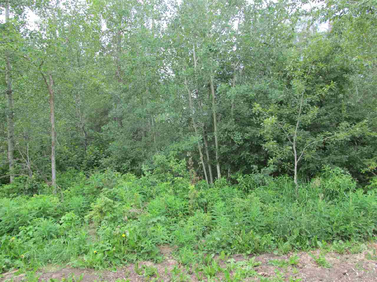 Photo 2: 453 Lakeview Drive: Rural Lac Ste. Anne County Rural Land/Vacant Lot for sale : MLS® # E4046326