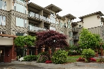 "Main Photo: 217 33539 HOLLAND Avenue in Abbotsford: Central Abbotsford Condo for sale in ""THE CROSSING"" : MLS® # R2172981"