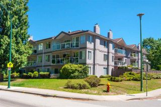 Main Photo: 101 1167 PIPELINE Road in Coquitlam: New Horizons Condo for sale : MLS®# R2289215