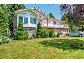 Main Photo: 20197 PATTERSON Avenue in Maple Ridge: Southwest Maple Ridge House for sale : MLS® # V975551