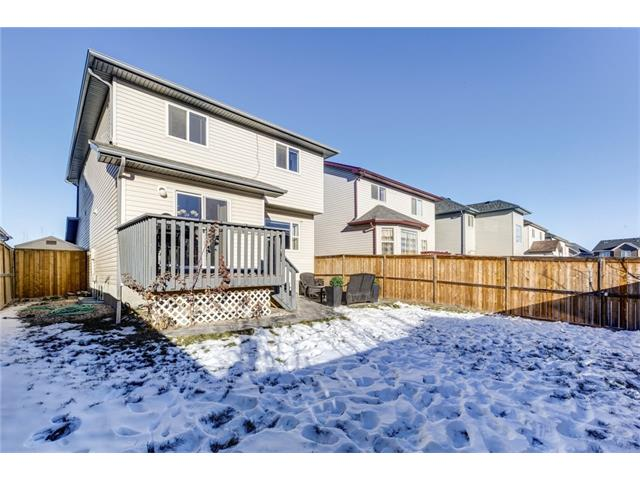 Photo 29: 41 ROYAL BIRCH Crescent NW in Calgary: Royal Oak House for sale : MLS® # C4041001