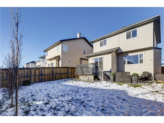 Photo 28: 41 ROYAL BIRCH Crescent NW in Calgary: Royal Oak House for sale : MLS® # C4041001
