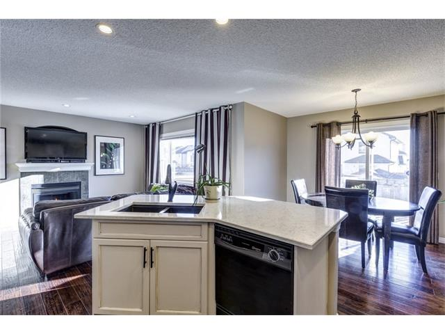 Photo 10: 41 ROYAL BIRCH Crescent NW in Calgary: Royal Oak House for sale : MLS® # C4041001