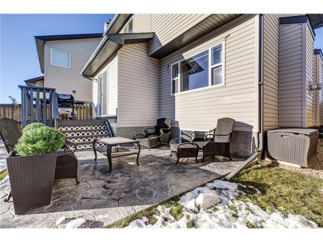 Photo 31: 41 ROYAL BIRCH Crescent NW in Calgary: Royal Oak House for sale : MLS® # C4041001