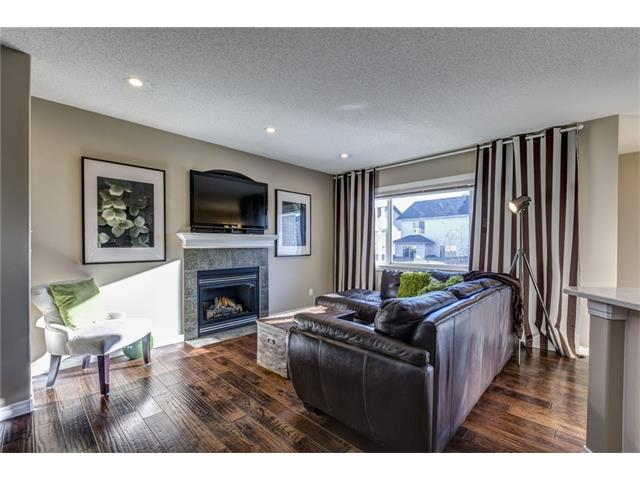 Photo 4: 41 ROYAL BIRCH Crescent NW in Calgary: Royal Oak House for sale : MLS® # C4041001
