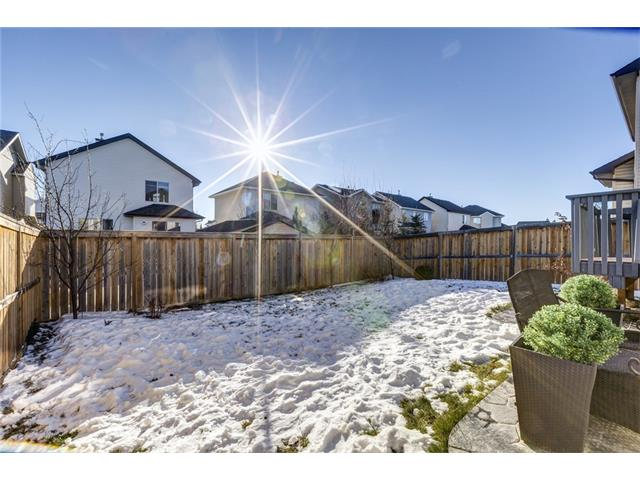 Photo 30: 41 ROYAL BIRCH Crescent NW in Calgary: Royal Oak House for sale : MLS® # C4041001