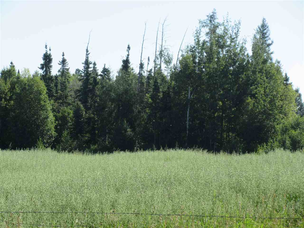 Main Photo: RR 213 North of Hwy 661: Rural Thorhild County Rural Land/Vacant Lot for sale : MLS® # E4078347