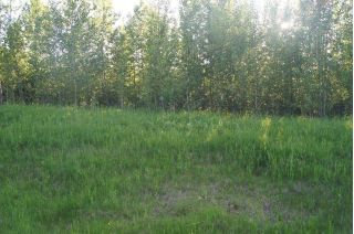 Main Photo: Range Road 150 HWY 748 East: Rural Yellowhead Rural Land/Vacant Lot for sale : MLS®# E4094061