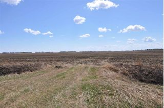 Main Photo: RR 261 TWP RD 570: Rural Sturgeon County Rural Land/Vacant Lot for sale : MLS®# E4102579