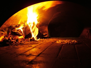 Main Photo: ~ WOOD FIRE PIZZA OVEN ~ in : Vancouver West Business for sale (Vancouver)