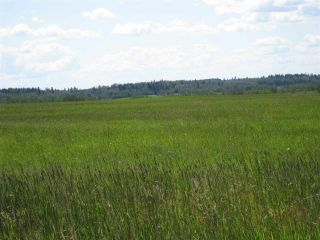 Main Photo: Twp Rd 562 Rge Rd 25: Rural Lac Ste. Anne County Rural Land/Vacant Lot for sale : MLS® # E4008544