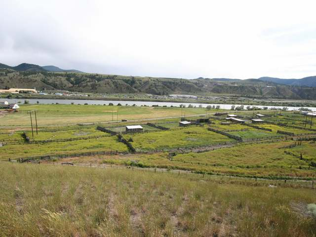 Photo 28: 2511 E SHUSWAP ROAD in : South Thompson Valley Lots/Acreage for sale (Kamloops)  : MLS(r) # 135236