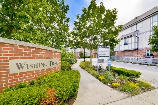 "Main Photo: 23 9566 TOMICKI Avenue in Richmond: West Cambie Townhouse for sale in ""WISHING TREE"" : MLS®# R2079825"