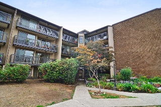 Main Photo: 216 9847 MANCHESTER Drive in Burnaby: Cariboo Condo for sale (Burnaby North)  : MLS®# R2209560