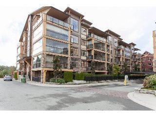 Main Photo: 308 8258 207A Street in Langley: Willoughby Heights Condo for sale : MLS® # R2213899