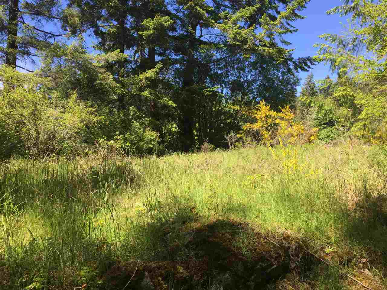 Photo 5: Photos: LOT 1 SEA OTTER ROAD in Pender Harbour: Pender Harbour Egmont Home for sale (Sunshine Coast)  : MLS® # R2088645