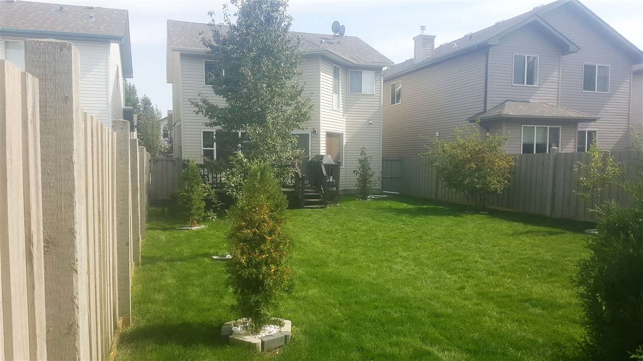Large backyard had new sod laid last year!
