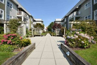 "Main Photo: 112 4738 53 Street in Delta: Delta Manor Condo for sale in ""SUNNINGDALE"" (Ladner)  : MLS®# R2300914"