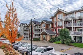 "Main Photo: 216 6440 194 Street in Surrey: Clayton Condo for sale in ""Waterstone"" (Cloverdale)  : MLS®# R2318953"
