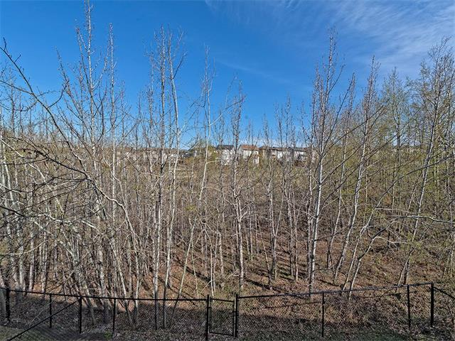 Photo 19: 55 ROCKLEDGE Terrace NW in Calgary: Rocky Ridge Ranch House  : MLS(r) # C4005810