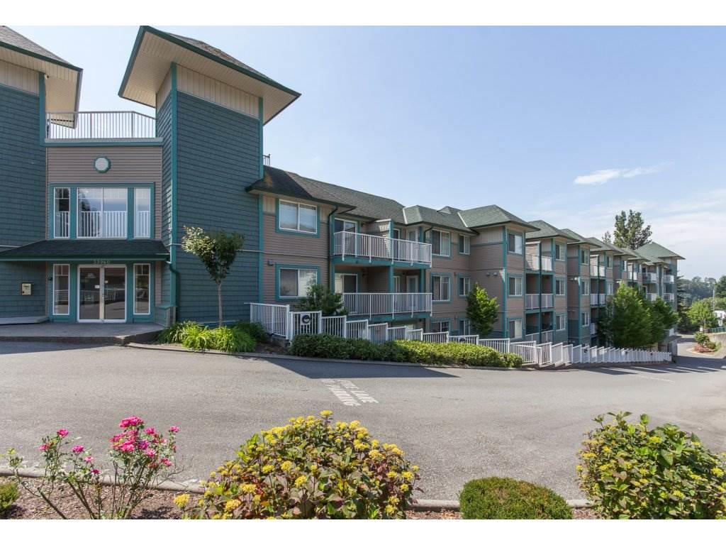 "Main Photo: 309 33960 OLD YALE Road in Abbotsford: Central Abbotsford Condo for sale in ""Old Yale Heights"" : MLS®# R2128403"