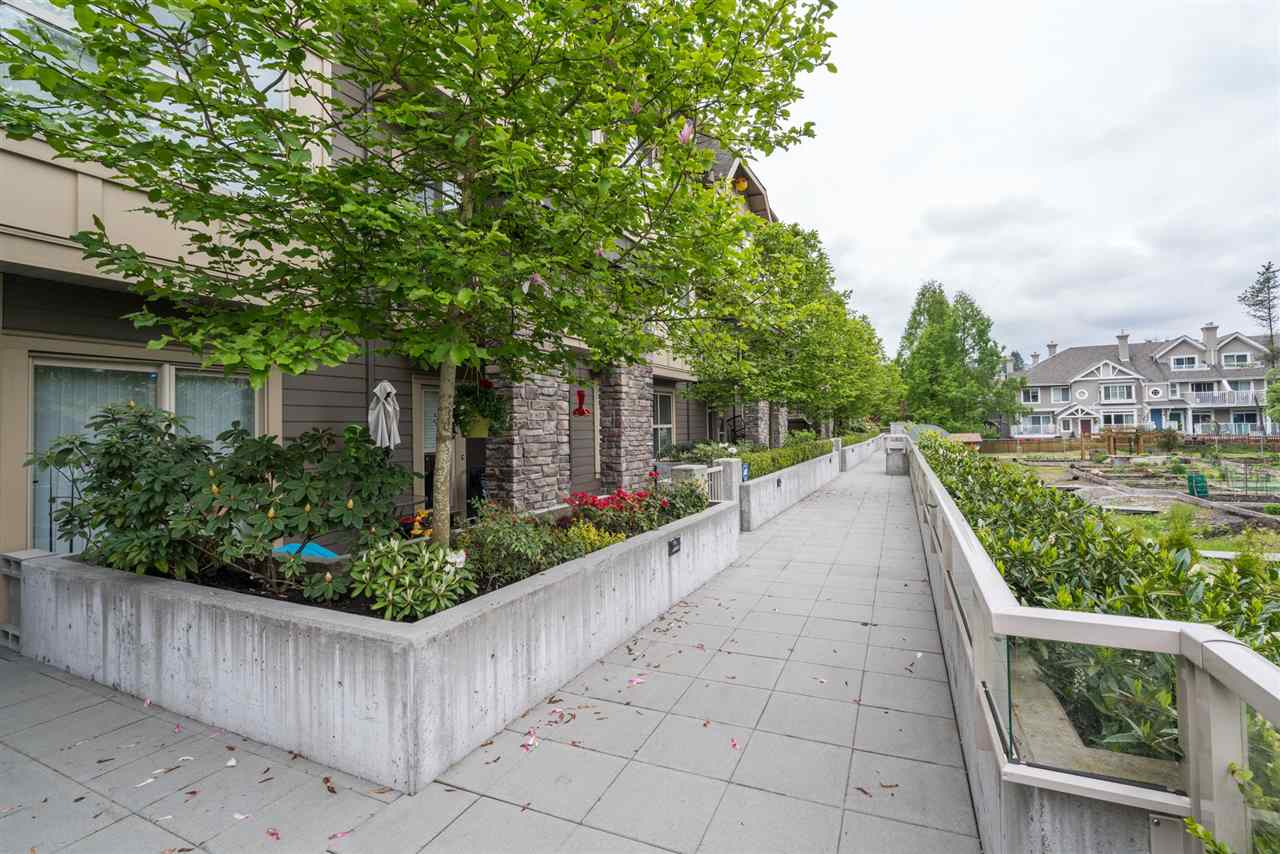 "Photo 1: 104 2110 ROWLAND Street in Port Coquitlam: Central Pt Coquitlam Townhouse for sale in ""AVIVA ON THE PARK"" : MLS(r) # R2168071"