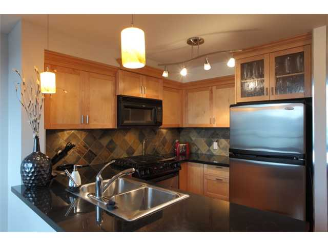 Photo 2: 304 7 RIALTO Court in New Westminster: Quay Condo for sale : MLS® # V916596