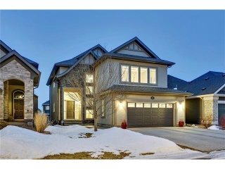 Main Photo: 133 Cranridge Terrace SE in Calgary: Cranston House for sale : MLS(r) # C4101212