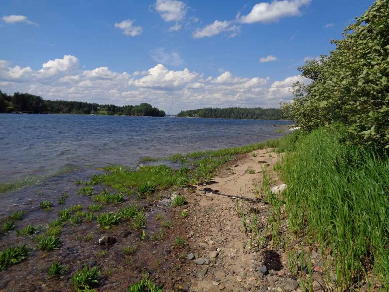 Photo 9: Photos: Lot Rous Island in Mahone Bay: 405-Lunenburg County Vacant Land for sale (South Shore)  : MLS® # 201716969
