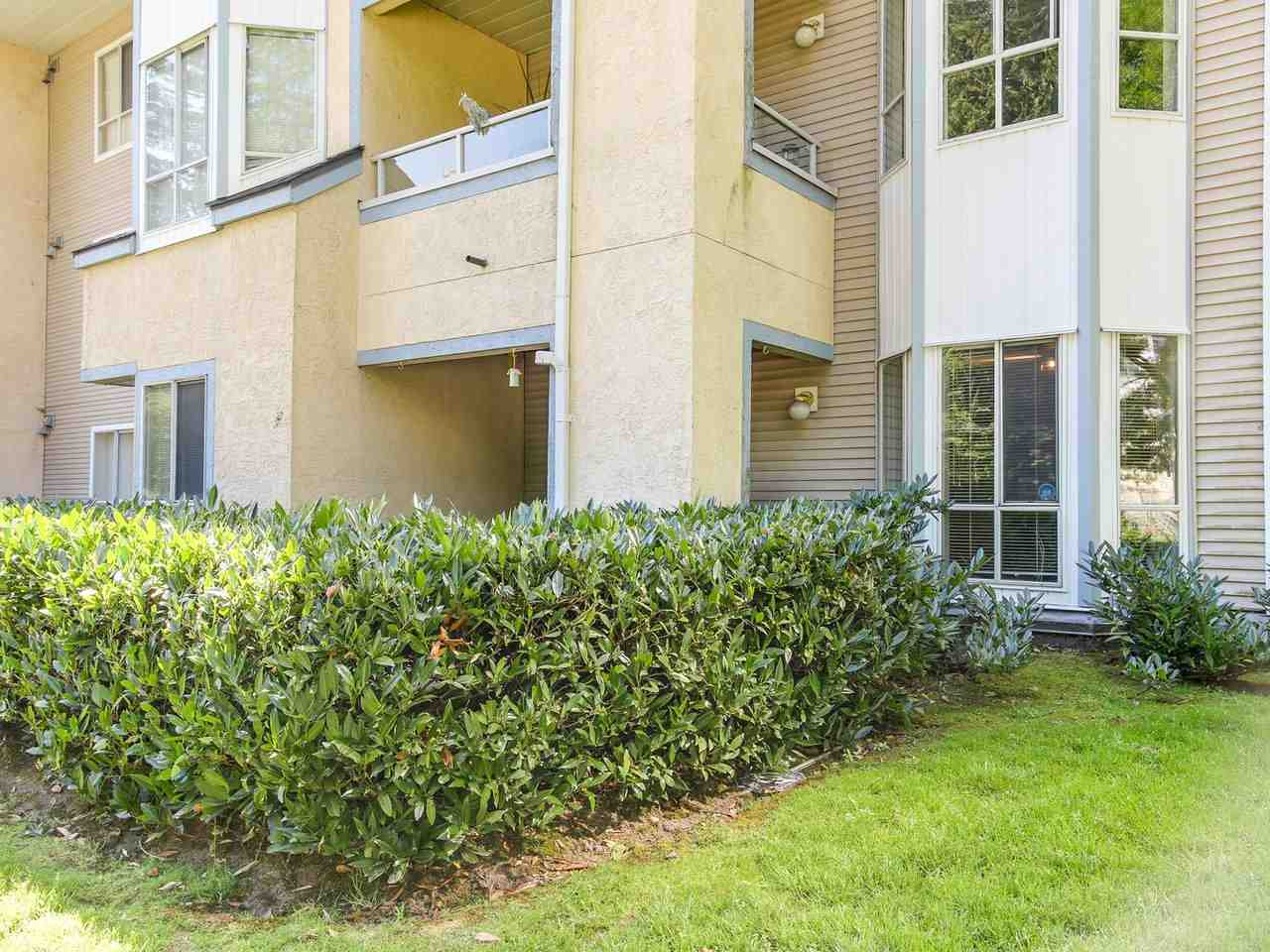 Photo 13: 105 1175 HEFFLEY Crescent in Coquitlam: North Coquitlam Condo for sale : MLS(r) # R2185533